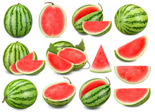 Collection Watermelon Isolated On White Background