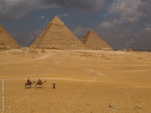 Fotografering  Arabic man with two camels in front of the Great Pyramids