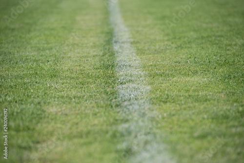 Fotografie, Obraz  campo calcio