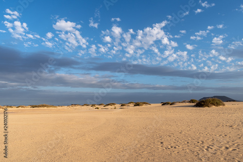 Poster de jardin Desert de sable Corralejo Natural Park, Fuerteventura, Canary