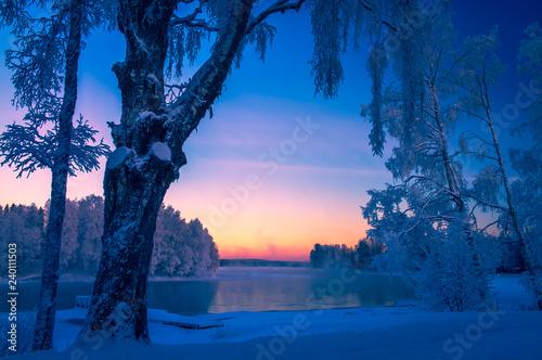 Fototapeta Snowy river view from Kuhmo, Finland. obraz na płótnie