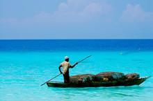 Fisherman With Traps - Zanzibar - Tanzania