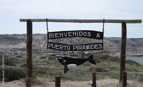 Fototapeta The bay of Puerto Pyramides, in the natural reserve Peninsula Valdes