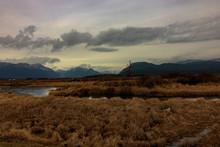 Alouette River Dike And Wetlands