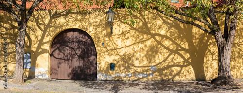 Fotografija  Prague - The acacias for the wall of Capuchins cloister.