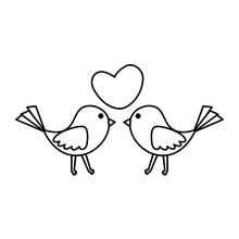 Birds Couple With Heart Love