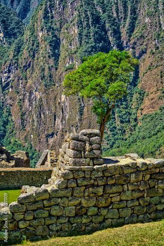 Foto  Machu Pichu Ruins