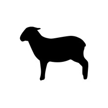 Lamb Silhouette Vector