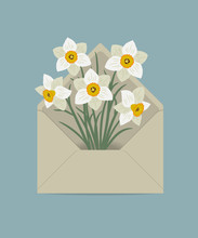 Bouquet Of White Daffodils In The Postal Envelope. Spring Flowers. Flower Delivery Concept. Floral Composition. Vector Illustration On A Blue Background