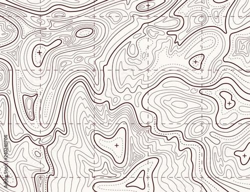 Fotografie, Obraz  Topographic map