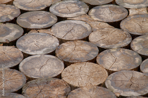 Pattern with floor made of wooden poles - Buy this stock