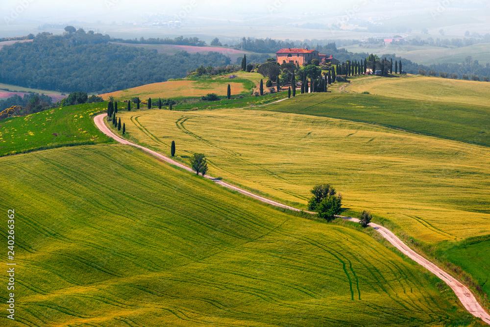 Fototapety, obrazy: Cudowny mglisty krajobraz Toskanii z zakrzywioną drogą i cyprysami, Włochy