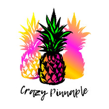Vector Illustration Of A Hand Drawn Colorful Pineapple Set Isolated On White.