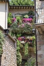 Assisi Umbria Italia