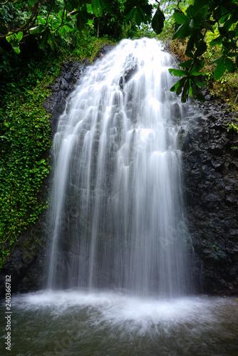 Fotografie, Obraz View of a cascading waterfall in Tahiti, French Polynesia