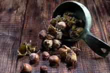 Hazelnuts In The Bowl. Scattered Hazelnuts. Front View. Wooden Background.