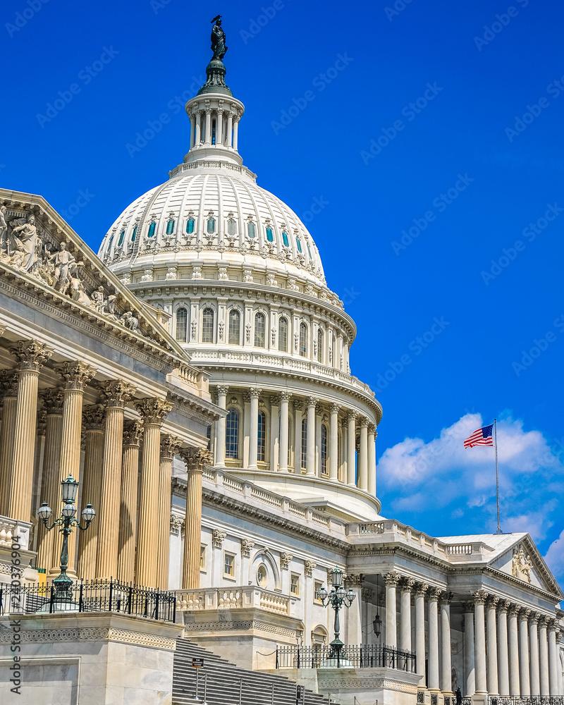 Fototapety, obrazy: U S Capital Building in Washington DC
