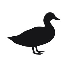 Duck Icon. Duck Black Silhouette Isolated On White Background. Vector Illustration