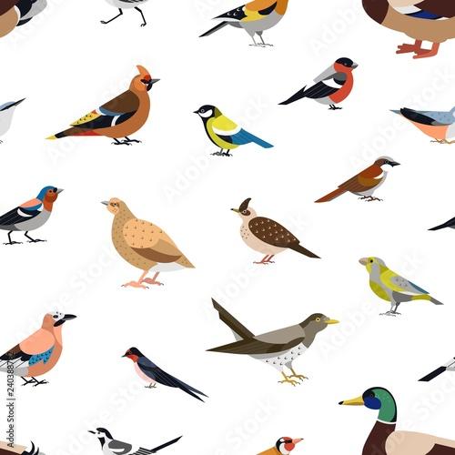 bezszwowy-wzor-z-dzikimi-lasowymi-ptakami