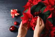 Woman With Poinsettia (traditional Christmas Flower) At Wooden Table, Closeup