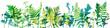 Leinwandbild Motiv Tempalte with leaves and plants silhouettes