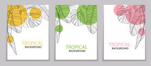Abstract Tropical Banana And Monstera Palm Leaves Tropical Background. Vector Illustration