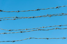Parallel Strands Of Barbed Wire
