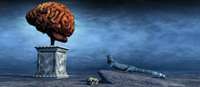 Brain And Blue Lizard