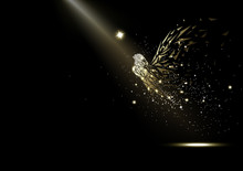Fairy, Stars Glowing Fantasy And Miracle, Sparkle In The Space, Light Rays Luxury, Fairytale Collection On Black Abstract Background Vector Illustration