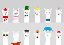 Alpaca Llama Set. Cute Cartoon...