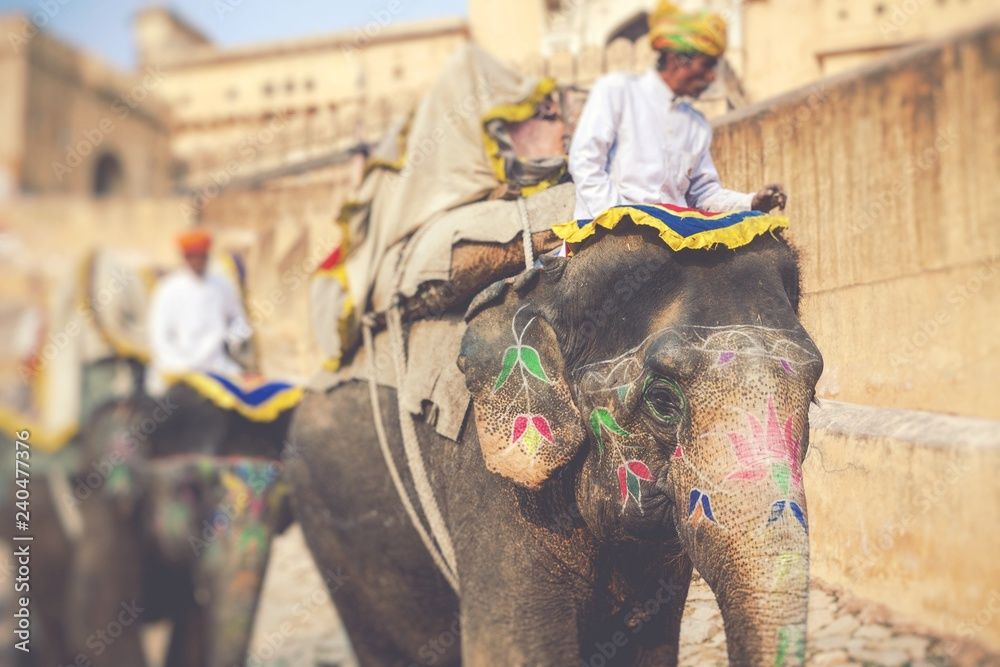 Decorated elephants in Jaleb Chowk in Amber Fort in Jaipur, India. Elephant rides are popular tourist attraction. Selective focus.