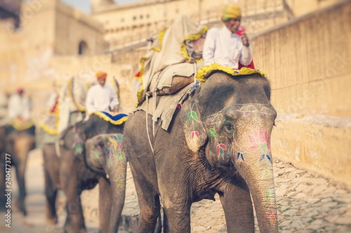 Fotografía Decorated elephants in Jaleb Chowk in Amber Fort in Jaipur, India