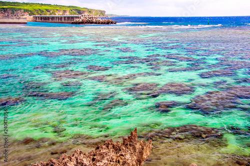 Morze rafy koralowej
