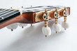 Gitarrenkopf 1