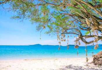 Blue sea, Chang