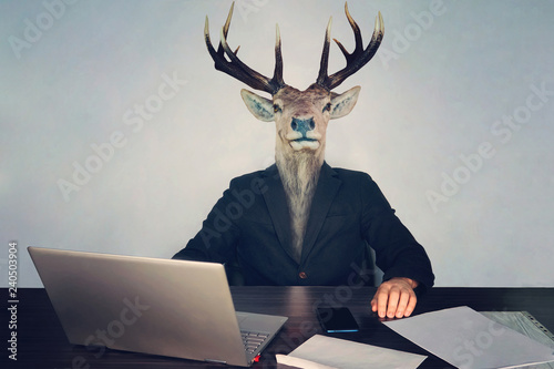 Photo male business man with deer head on a blue background in the office at the Desk
