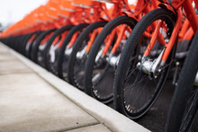 Rows Of Orange Bikes Parked Next To Each Other.