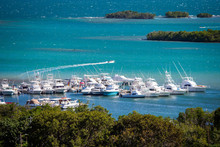 Multiple Boats Docked At Bay Of Puerto Rico