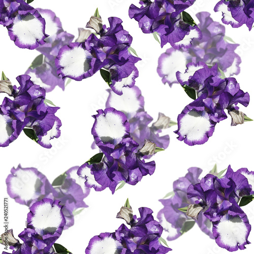 Beautiful floral background of irises