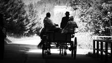 Paar Auf Hochzeitskutsche Als Schattenbild In Schwarz Weiß