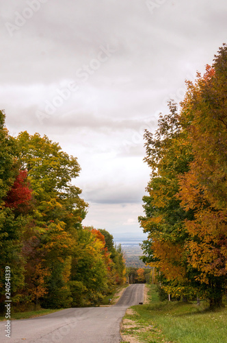 Fotografia, Obraz  Fall Colors Upstate New York