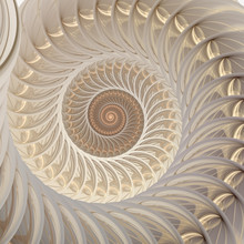 Abstract Fractal Spiral. Shell...