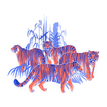 Four Graphic Tigers Standing A...