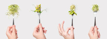 Woman Hand Holding Micro Greens On Fork. Healthy Eating, Fresh Garden Produce Organically Grown. Symbol Of Health And Vitamins From Nature. Microgreens, Vegan And Vegetarian Diet Concept
