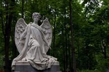 Grieving Angel Against A Backg...