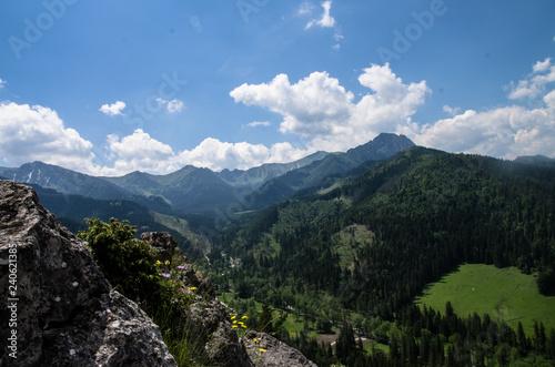 Fototapeta panoramic view of the mountains obraz na płótnie