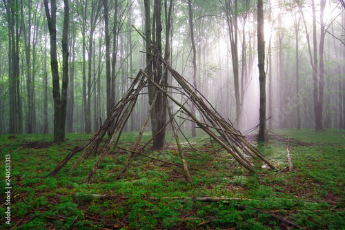 Photo  Mysterious and mystical primitive bushcraft shelter in the fog and sunlight in a moss covered hardwood forest