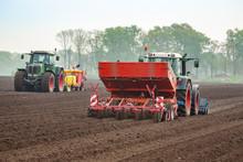Kartoffelanbau Aussaat