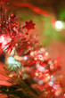 Colorful blurred background in Christmas theme