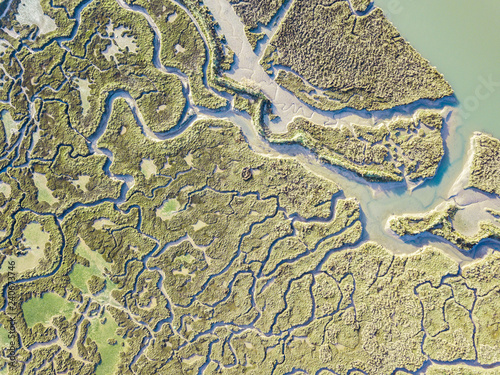 aerial view of marshland Canvas-taulu